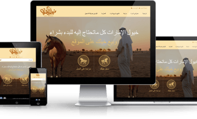 uae,horses,website,design,Dubai