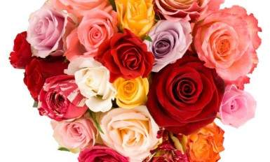 love,gifts,website,valentines day,special occasions,UAE,Dubai